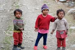 nepalpt-3907