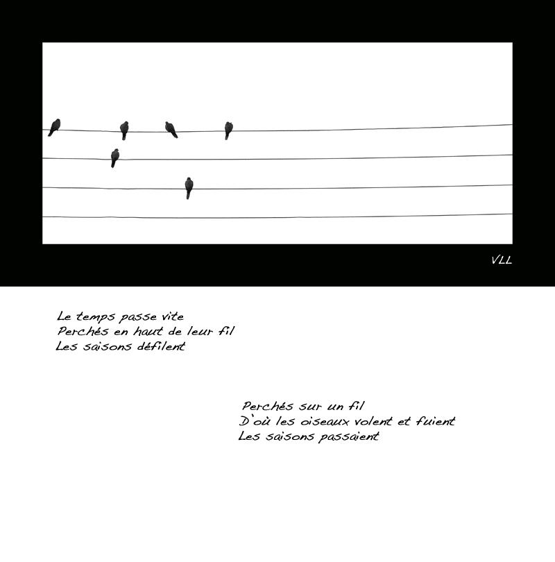 haiku5